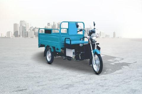 Gkon E Cart Cargo